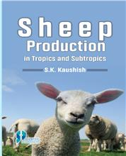 Sheep Production in Tropics and Subtropics