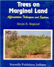 Trees on Marginal Land (Afforestation Techniques Systems)