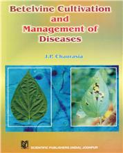 Betelvine Cultivation & Management of Diseases