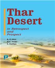 Thar Desert in Retrospect and Prospect