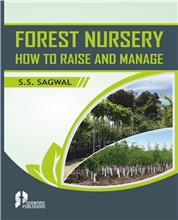 Forest Nursery: How to Raise and Manage