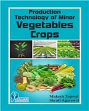 Production Technology of Minor Vegetable Crops